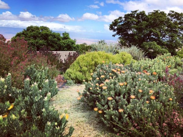 Tour, Walk garden