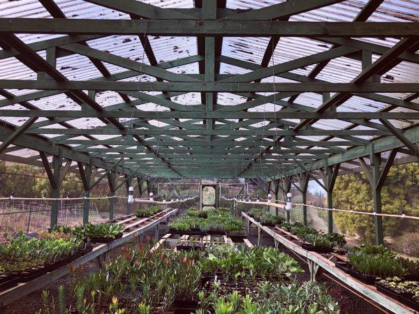 Tour , Greenhouse